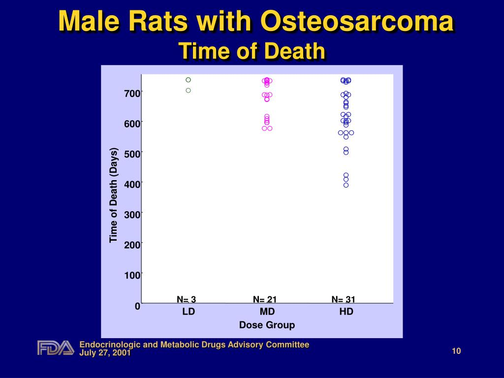 Male Rats with Osteosarcoma
