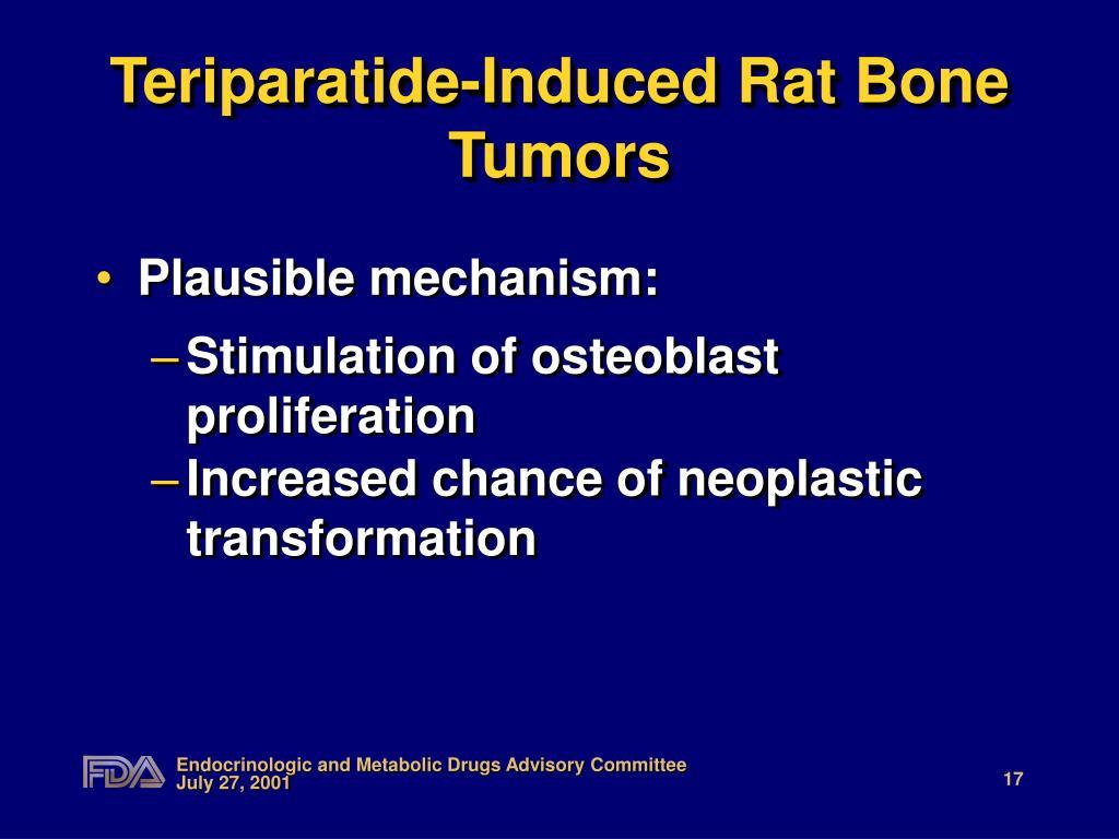 Teriparatide-Induced Rat Bone Tumors