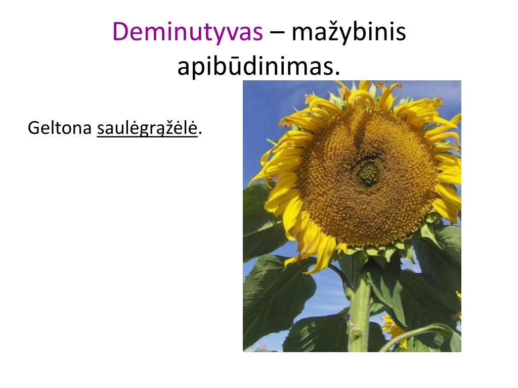 Deminutyvas