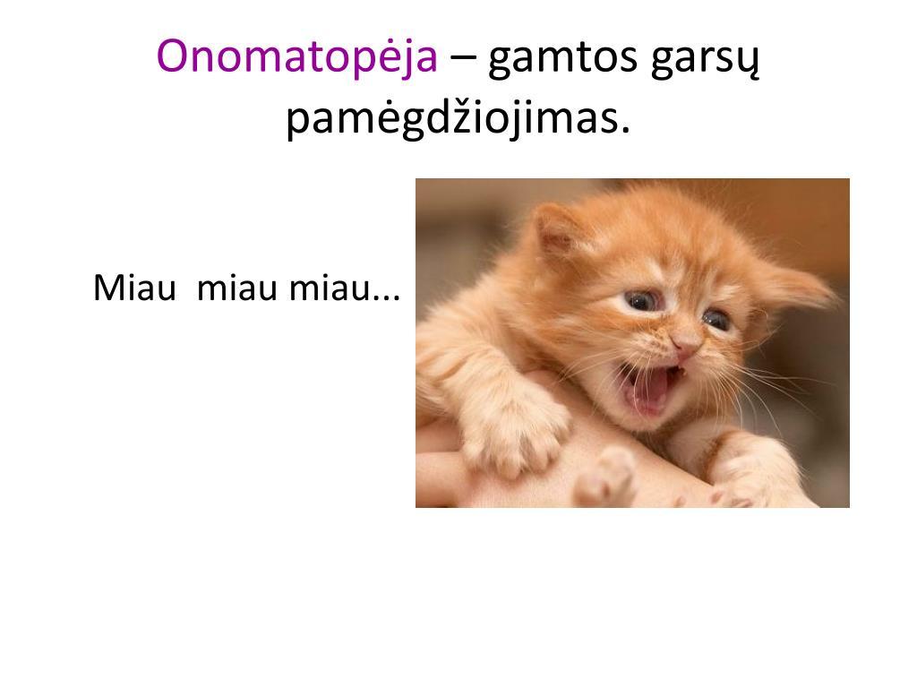 Onomatopėja