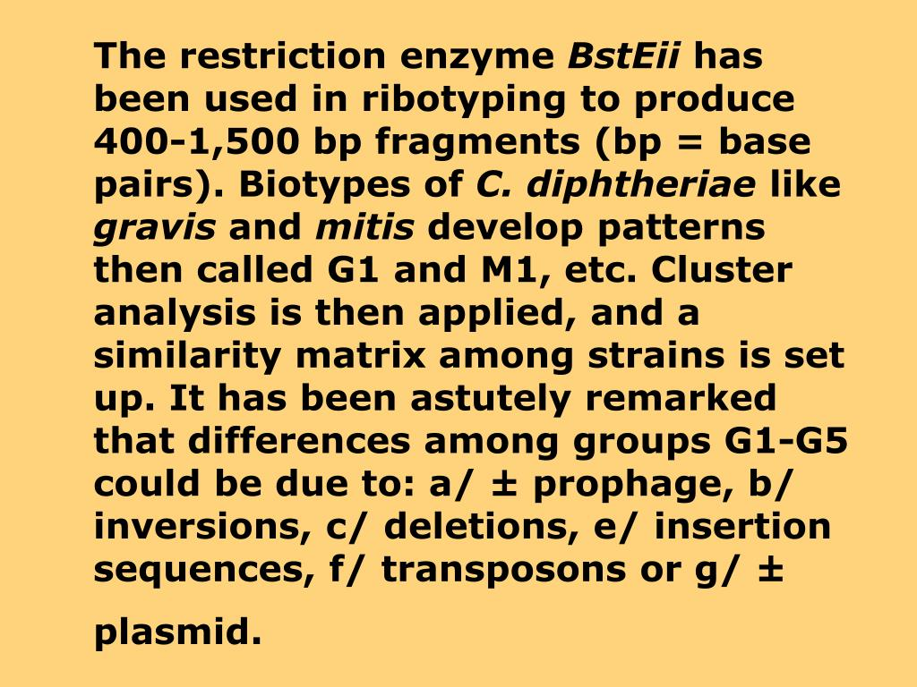 The restriction enzyme
