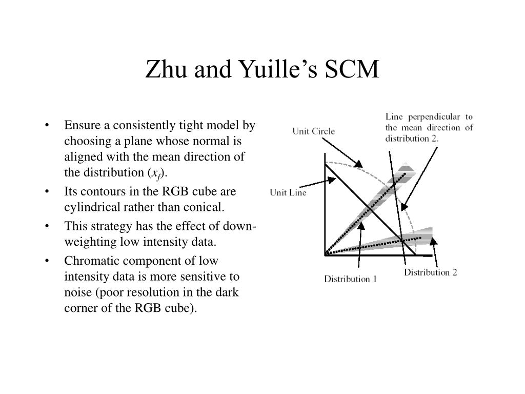 Zhu and Yuille's SCM