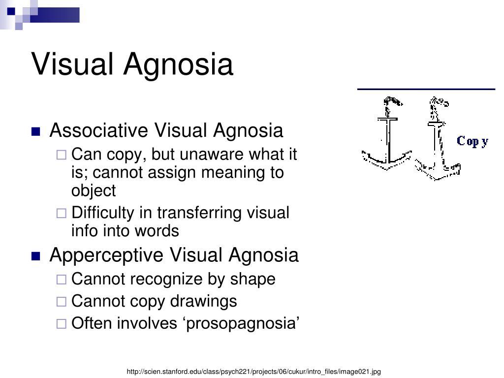 Visual Agnosia