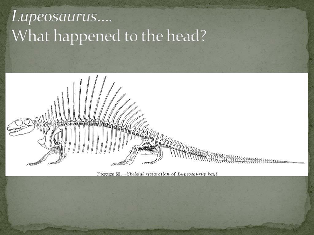 Lupeosaurus