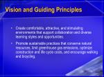 vision and guiding principles11