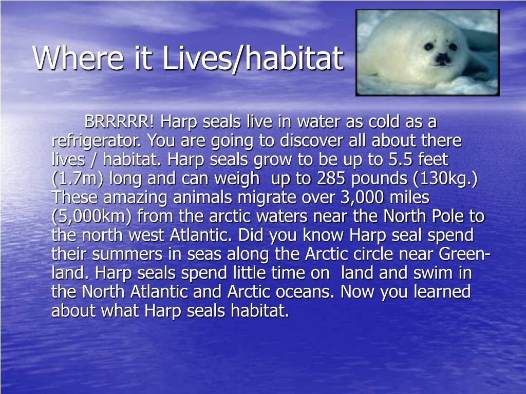 Where it Lives/habitat