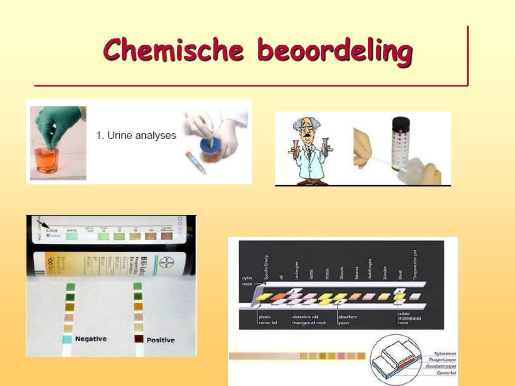 http://image.slideserve.com/362980/chemische-beoordeling-l.jpg
