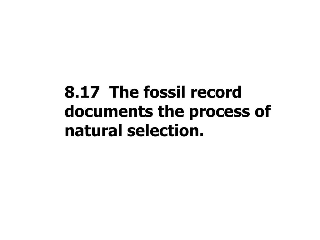 8.17  The fossil record documents the process of natural selection.