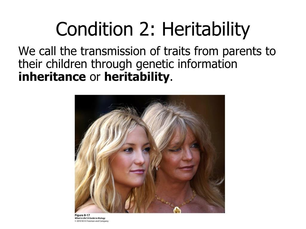 Condition 2: Heritability