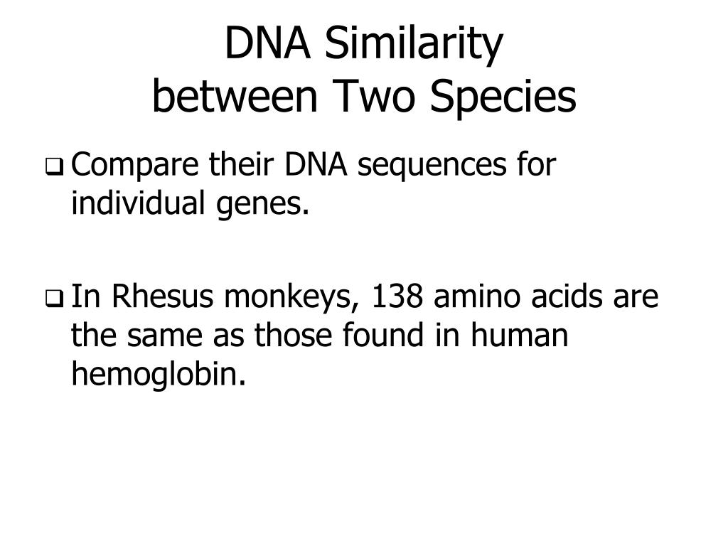 DNA Similarity