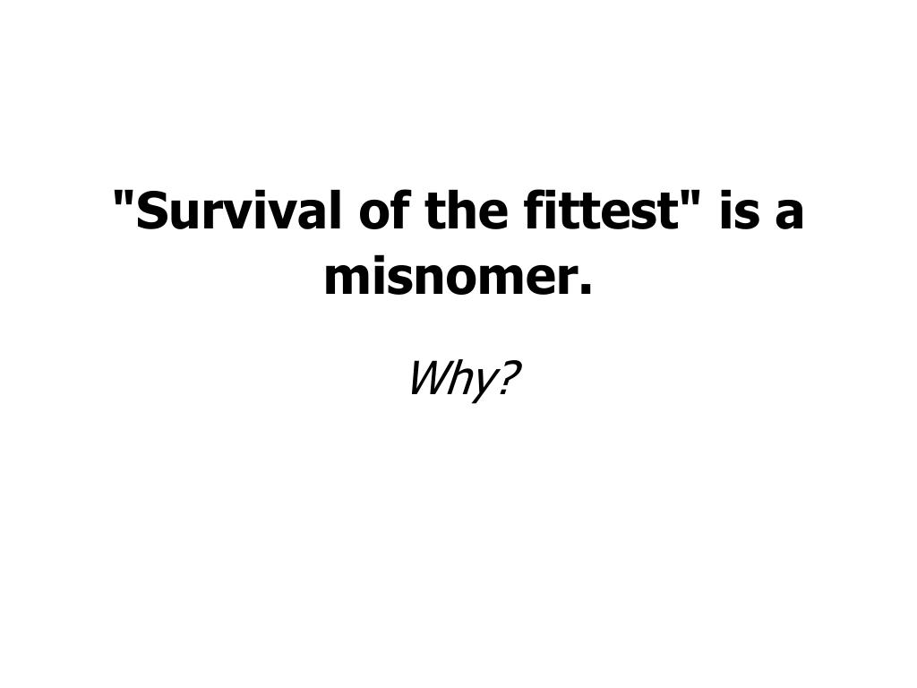 """Survival of the fittest"" is a misnomer."