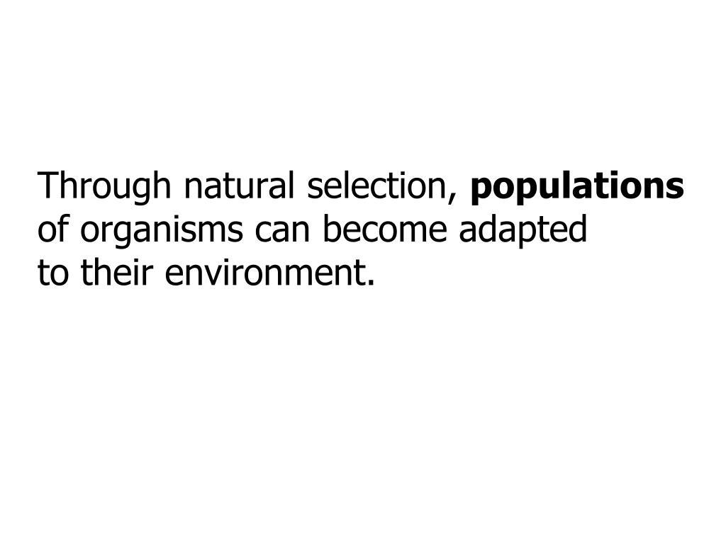 Through natural selection,