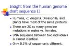 insight from the human genome draft sequence ii