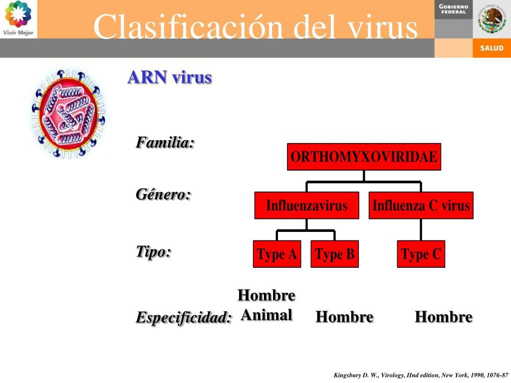 ARN virus