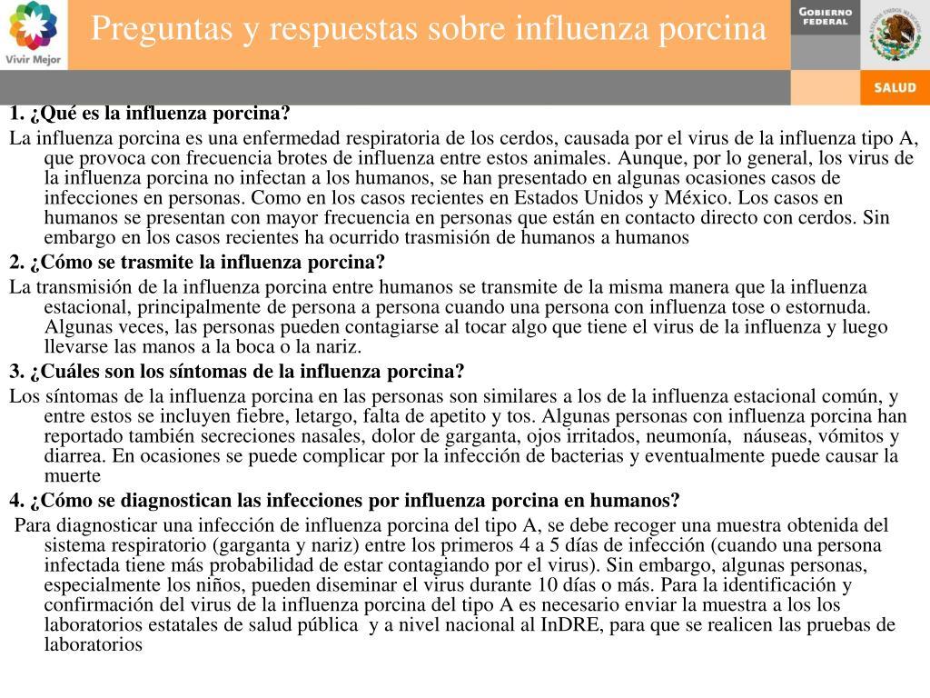 1. ¿Qué es la influenza porcina?