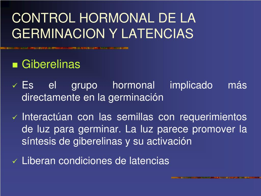 PPT - GERMINACION PowerPoint Presentation - ID:363403