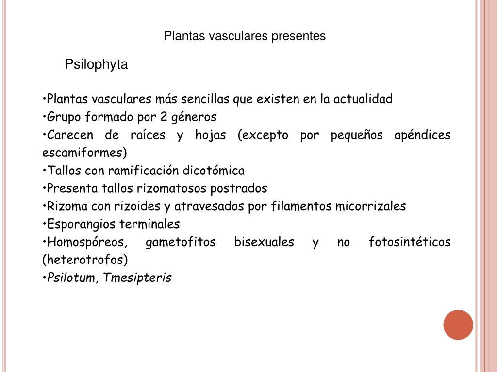 Plantas vasculares presentes
