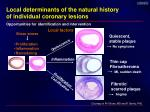 local determinants of the natural history of individual coronary lesions