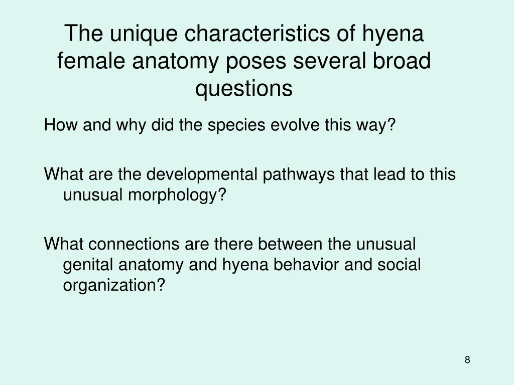 The unique characteristics of hyena female anatomy poses several broad questions