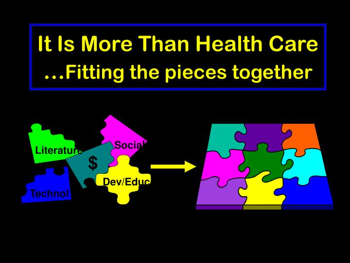 It is more than health care fitting the pieces together l.jpg