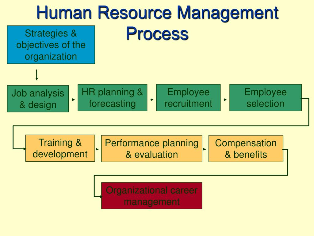 exercise human resource management essay Following are common areas of focus for many business owners, hr directors,  managers, training & development professionals, and human capital specialists.