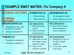 example swot matrix for company a