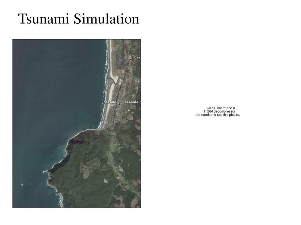 Tsunami Simulation
