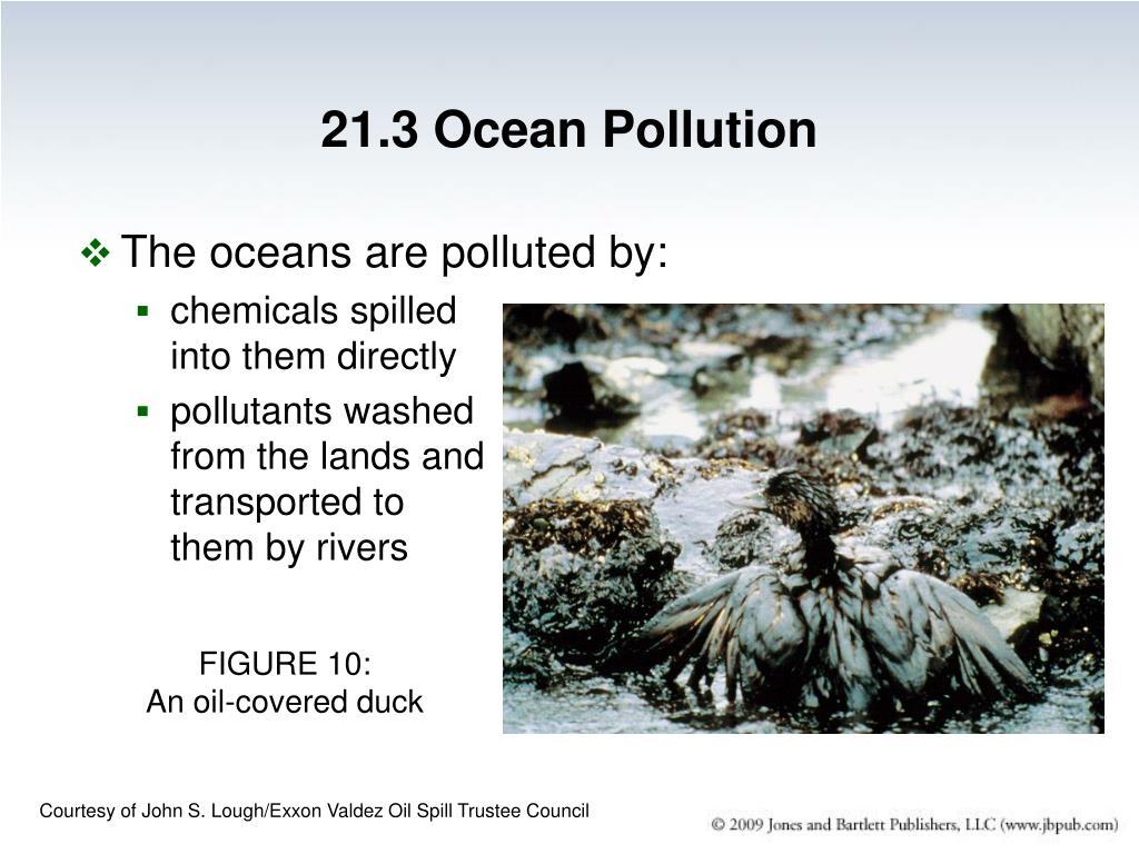 21.3 Ocean Pollution