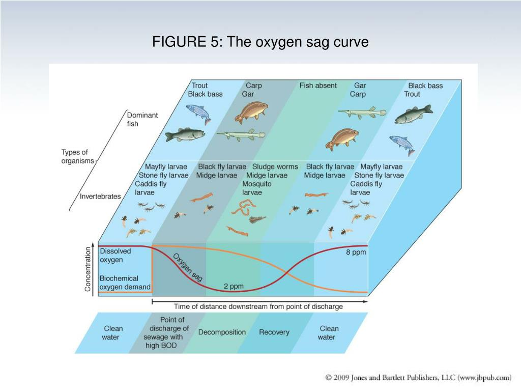 FIGURE 5: The oxygen sag curve