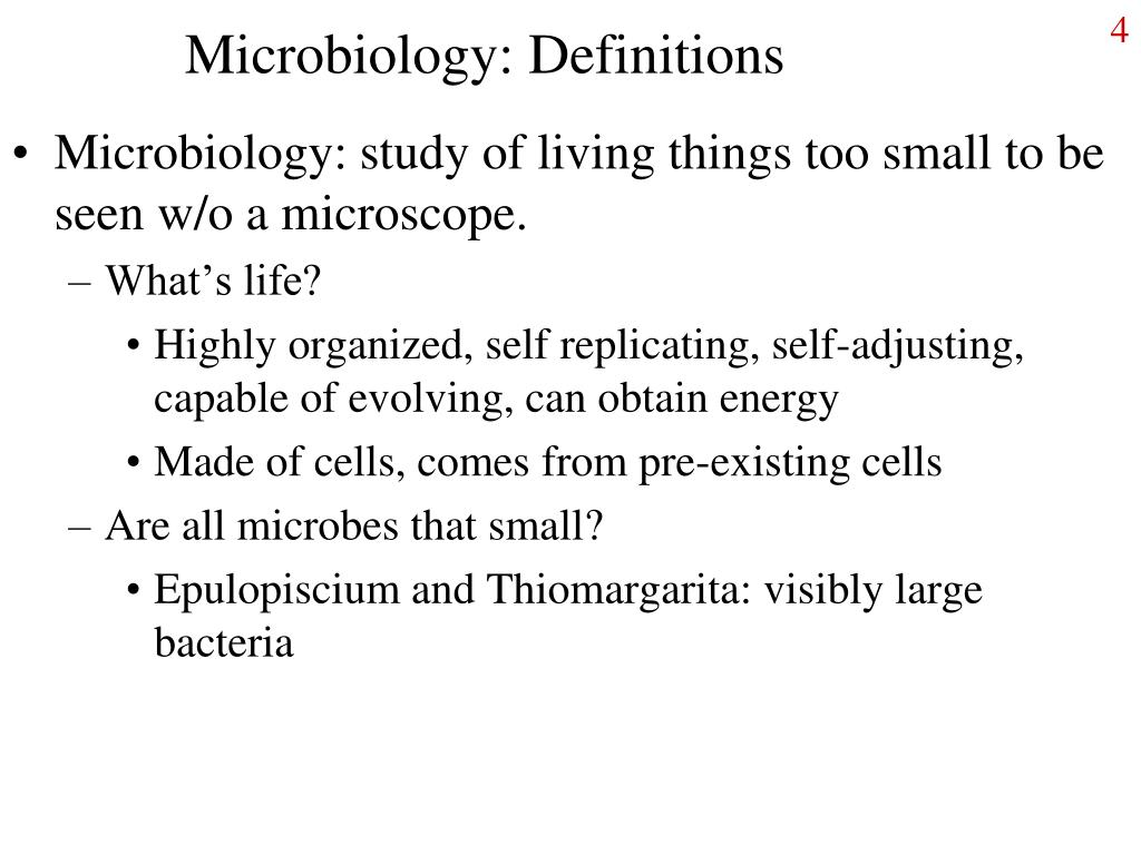 Microbiology: Definitions