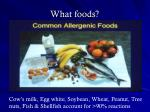 what foods