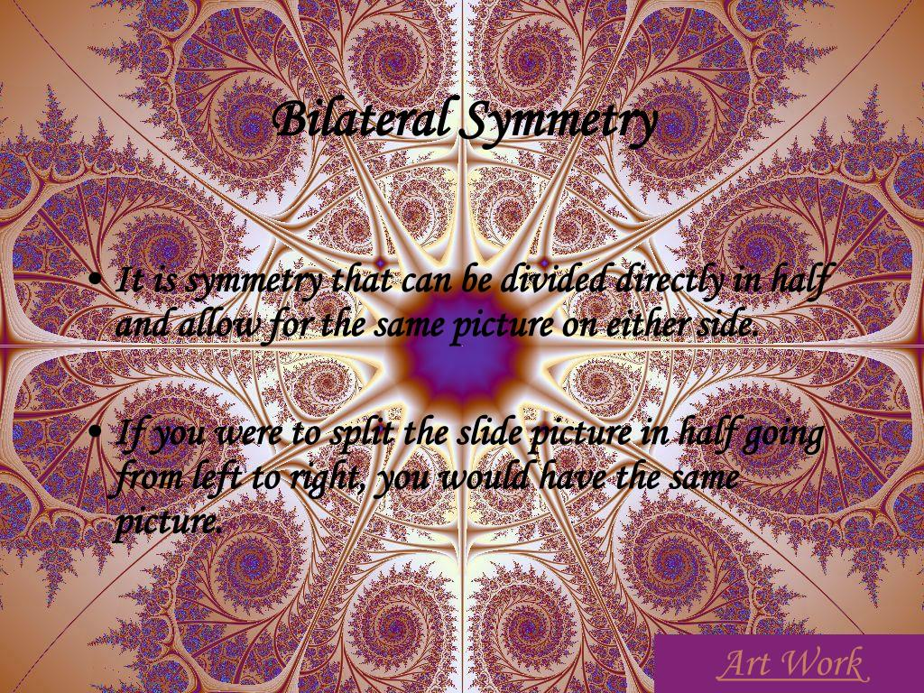 Bilateral Symmetry