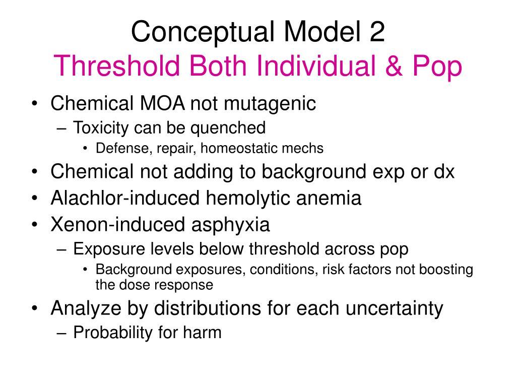 Conceptual Model 2