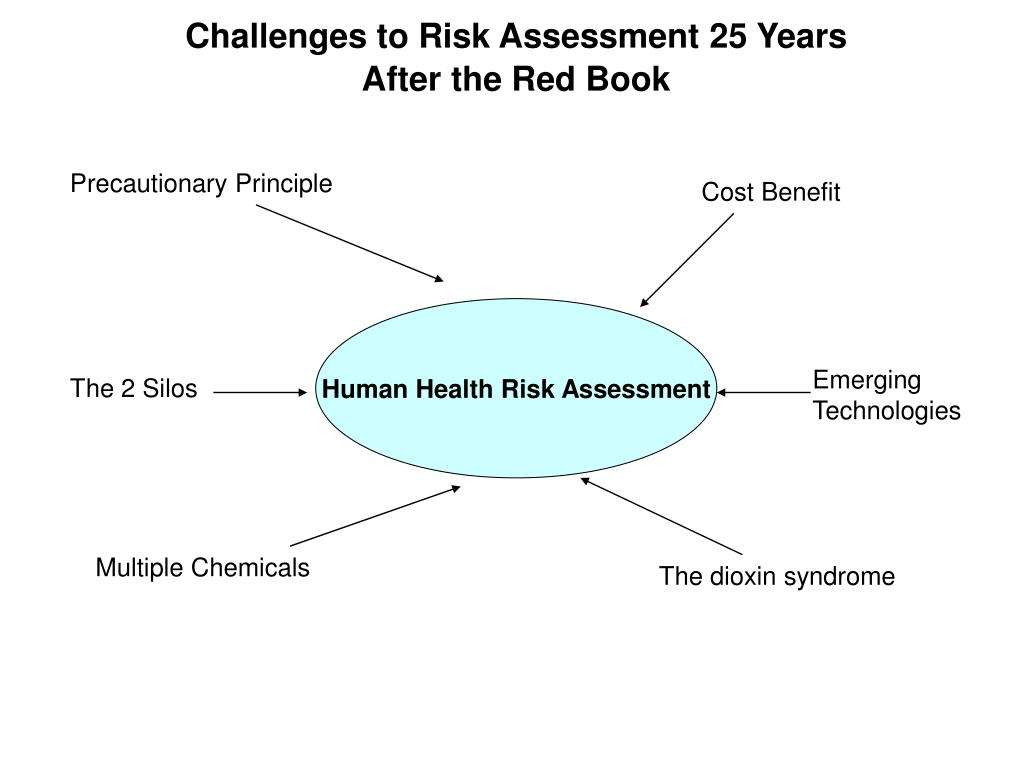 Challenges to Risk Assessment 25 Years