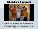 sottocultura di consumo