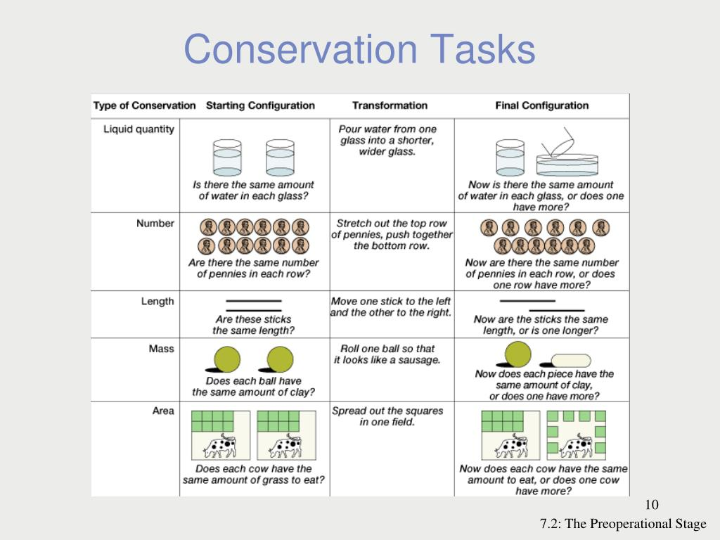 piagets conservation tasks essay Piagetian conservation tasks case study essay 1436 words 6 pages  overview my case subject is regina holms, a second grader, from county  elementary.