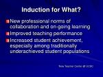 induction for what