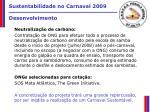 sustentabilidade no carnaval 2009 desenvolvimento14