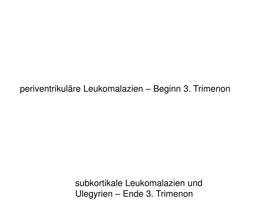 periventrikuläre Leukomalazien – Beginn 3. Trimenon