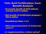 folic acid fortification cost benefit analysis