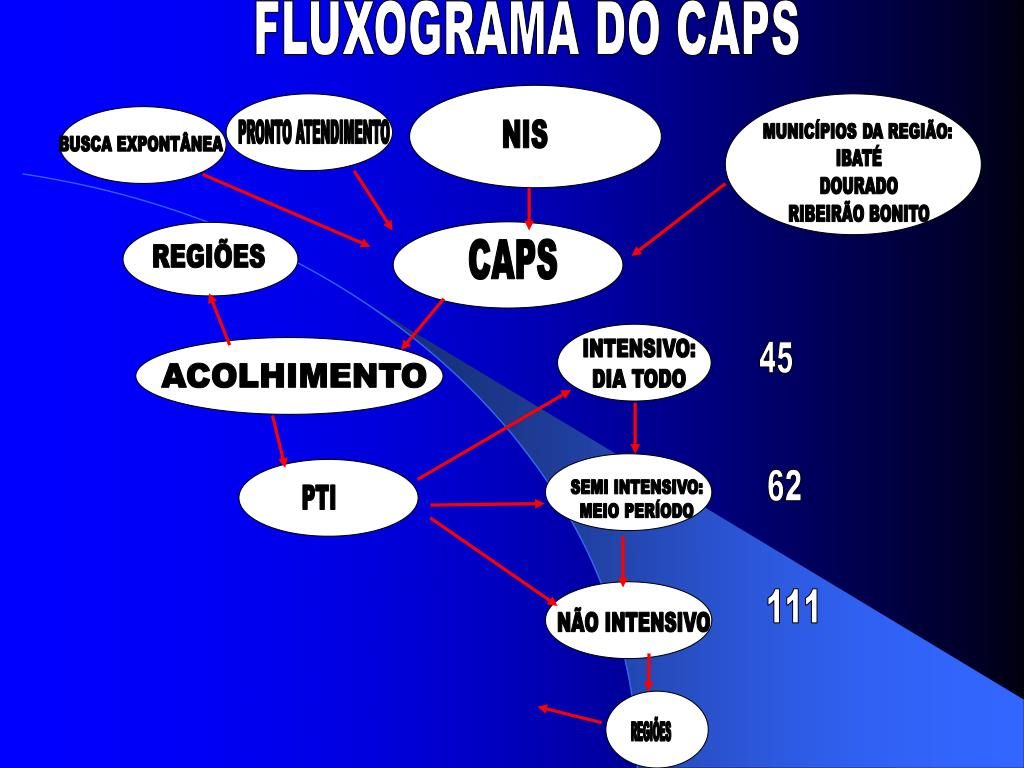FLUXOGRAMA DO CAPS