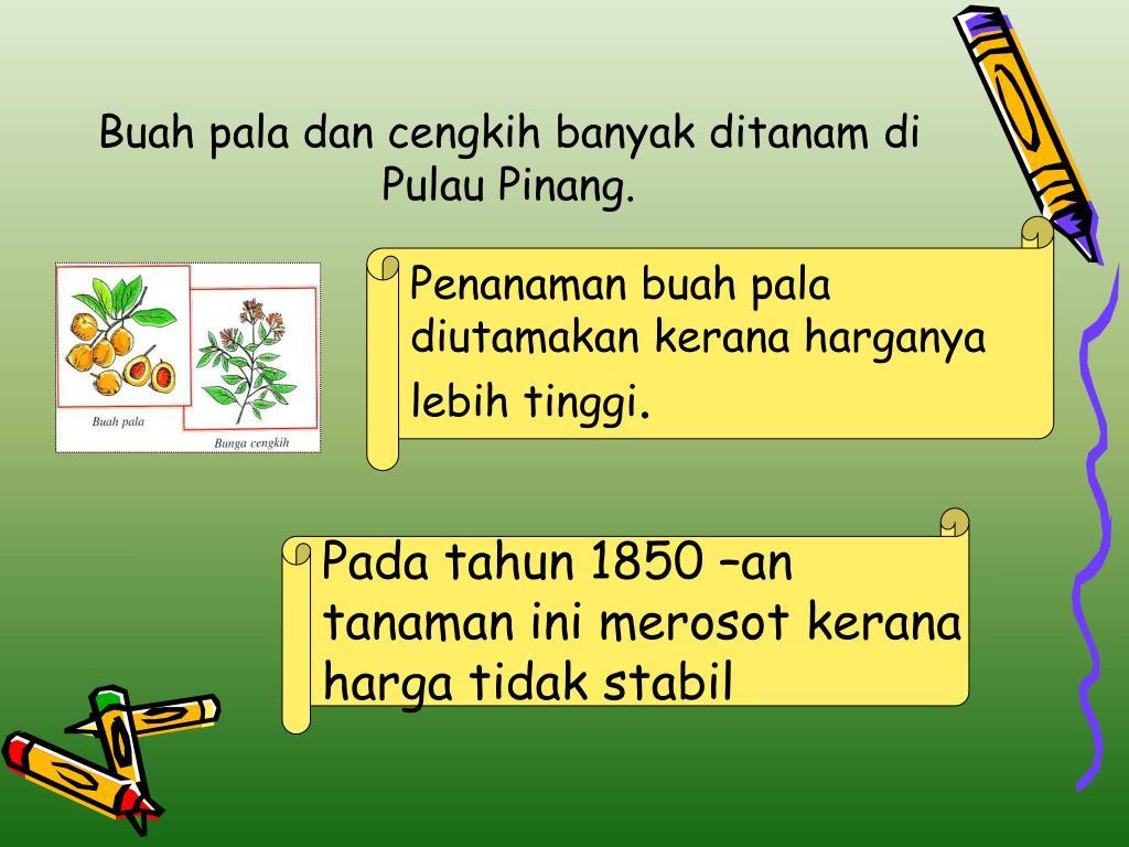 Buah pala dan cengkih banyak ditanam di Pulau Pinang.