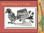 aztec drawing of a turkey