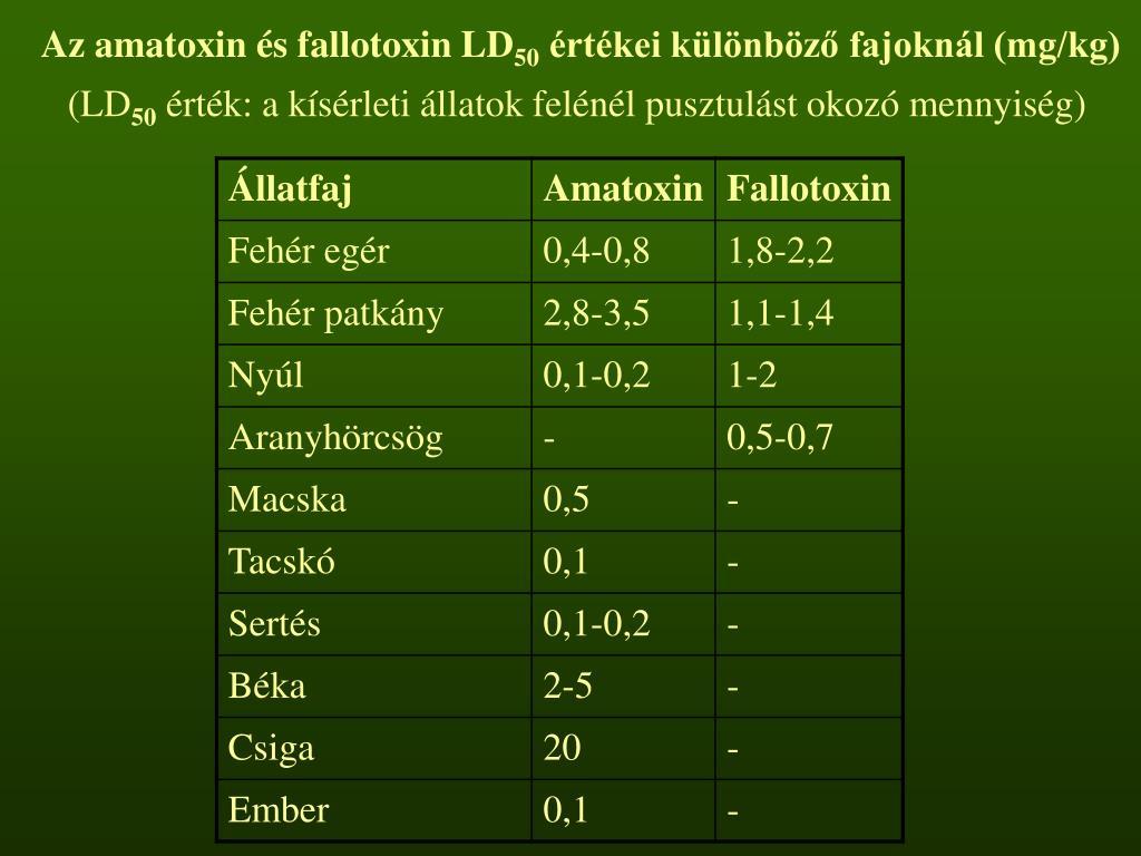 Az amatoxin és fallotoxin LD