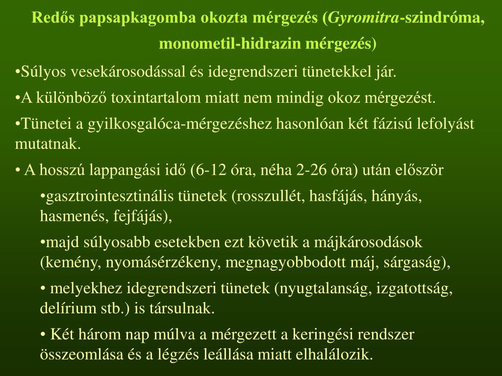 Redős papsapkagomba okozta mérgezés (