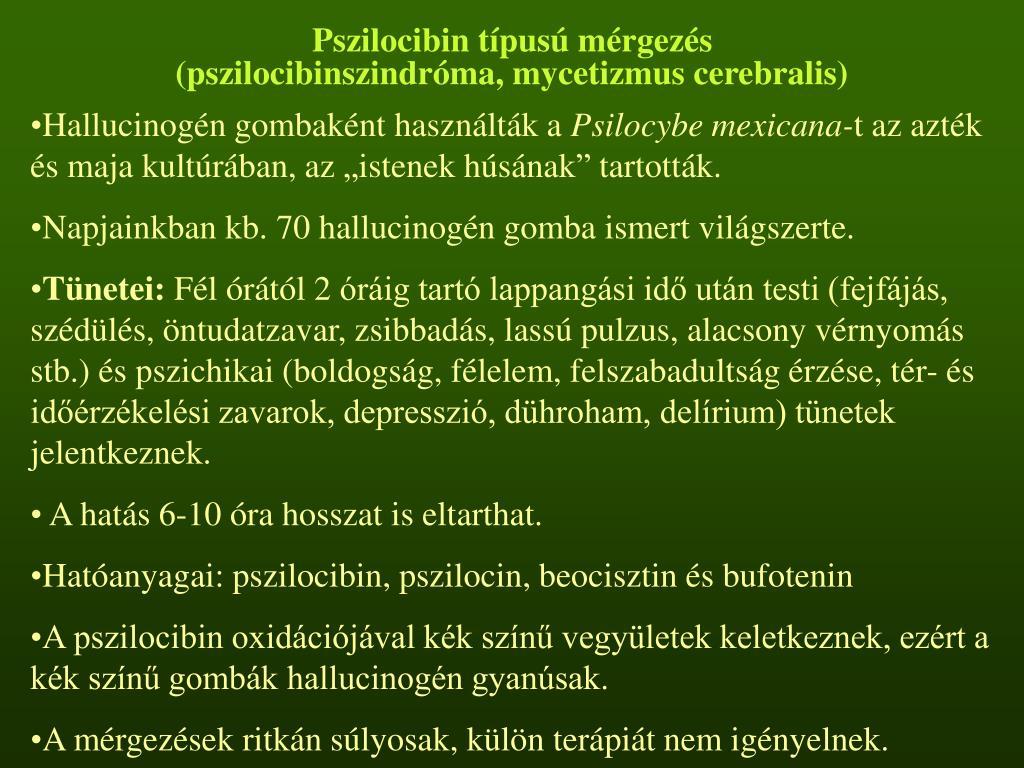 Pszilocibin típusú mérgezés