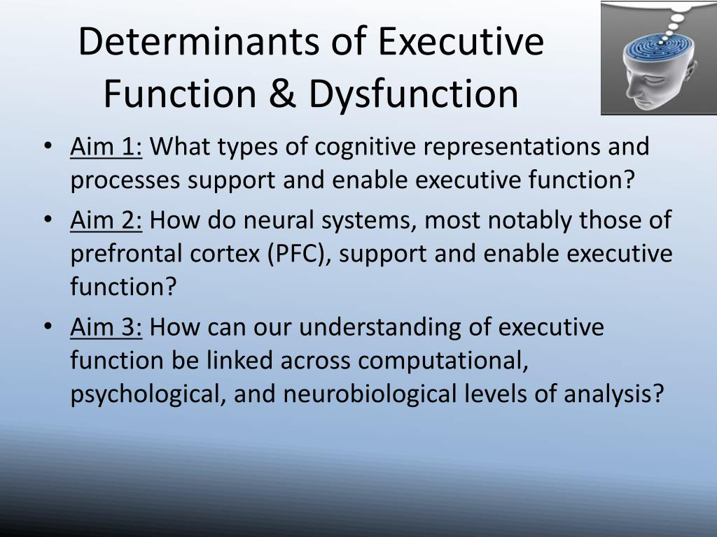 Determinants of Executive Function & Dysfunction