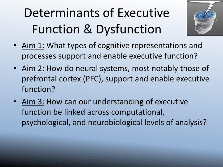Determinants of executive function dysfunction