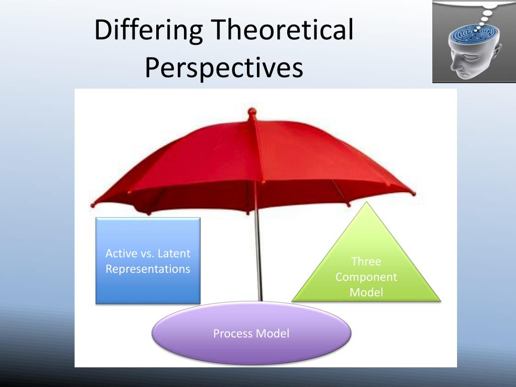Differing Theoretical Perspectives
