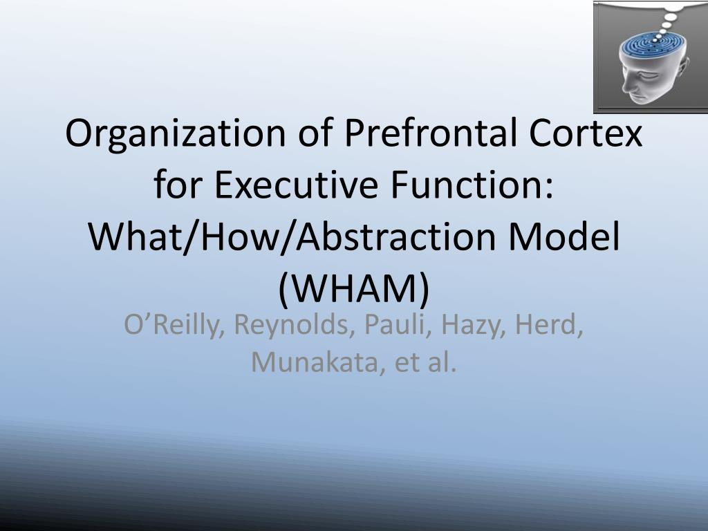 Organization of Prefrontal Cortex for Executive Function: What/How/Abstraction Model (WHAM)